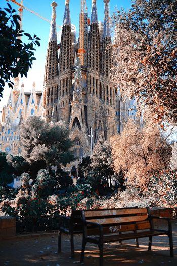 SPAIN Sagrada
