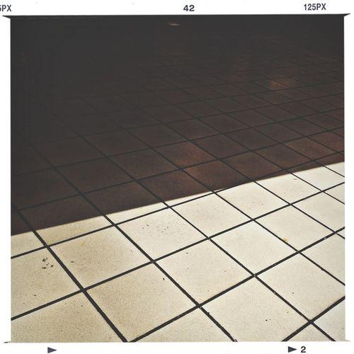 Shadow Shadows 50/50