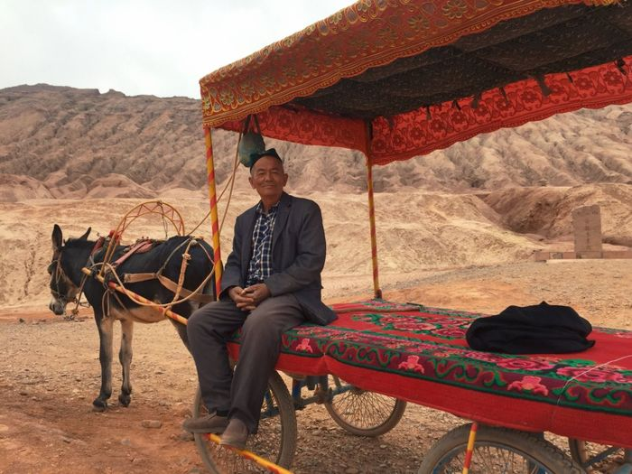 IPhoneography تاغا Donkey DonkeyCart One Person Men
