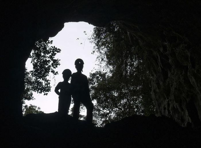 Petar Cave Tree