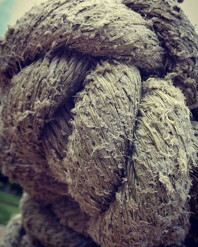 I_macro_i Ropeswing  Texture Rope Maypole Playground Frimleypark Filltheframe_nio 9vaga_twisted9 Wmm_brown