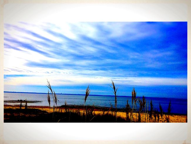 Audenge Sunday Passion Plaisir Landscape Relaxing Taking Photos Sun Winter Contrast Bassin D Arcachon Nature