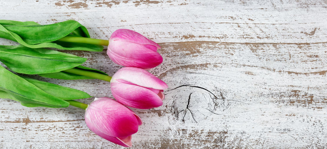 Close-Up Of Tulips On Wooden Table