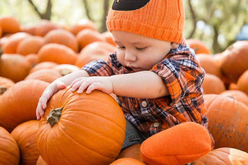 Green Meadows Farm 6 Months Baby Baby Boy Babyboy Fall Fall Beauty Fall Colors Fall Collection Flannel Halloween Halloween EyeEm Halloween_Collection Little Boy Mom Mom And Son Mother Mother And Son Orange Orange Color Pumpkin Pumpkin Carving Pumpkin Patch Pumpkinpatch Pumpkins Toddler