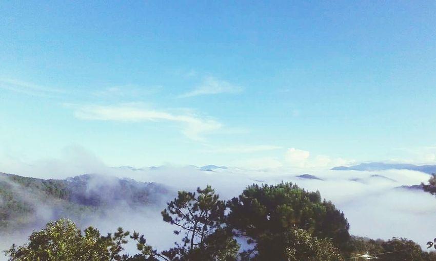 Đà Lạt mây mờ ... Mountain First Eyeem Photo