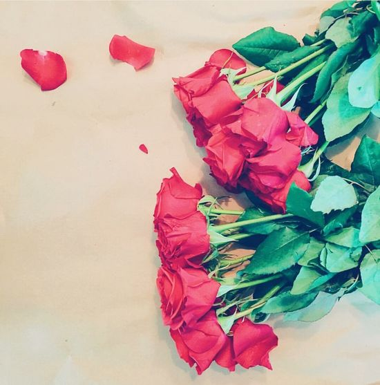 Roses Rose🌹 Love Live Love Life Lovely Girl Girlfriend Surprise! Surprised Lovely Day Photography Photooftheday Moments