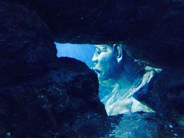 Underwater Enjoying Life Ladygiant Giant Sea Aquarium Sealife Sealifeaquarium Myth Mythology