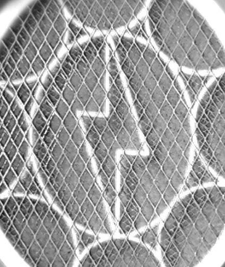 Creative Power Powerbat Mosquitorampage Black&whitecollection EyeEm Best Shots - Black + White