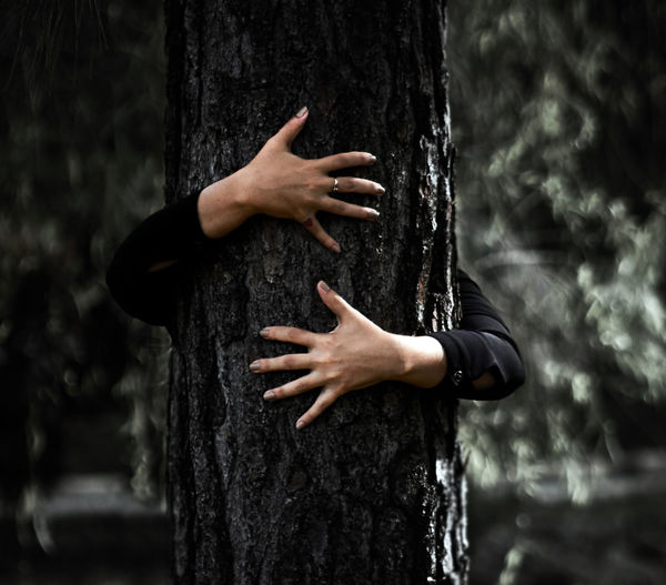 Midsection of woman standing by tree trunk in forest
