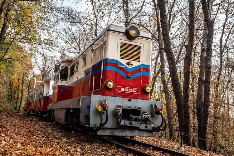 Nature Train Trees Tree Autumn Red Day Outdoors Forest Track Transportation Railway Public Transportation Plant Rail Road Railroad Track No People Rail Transportation Land Vehicle Mode Of Transportation Land Train - Vehicle Branch Fall Travel