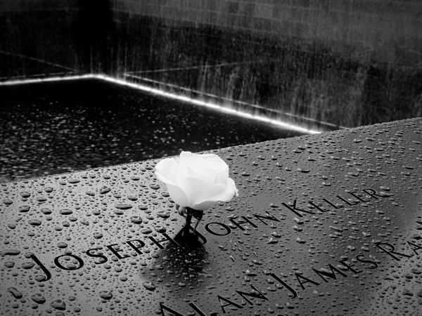Western Script Text No People Communication Wet Day Outdoors Water Close-up Nature 9/11 Memorial 9/11 Tribute NeverForget U.S.A New York EyeEmNewHere