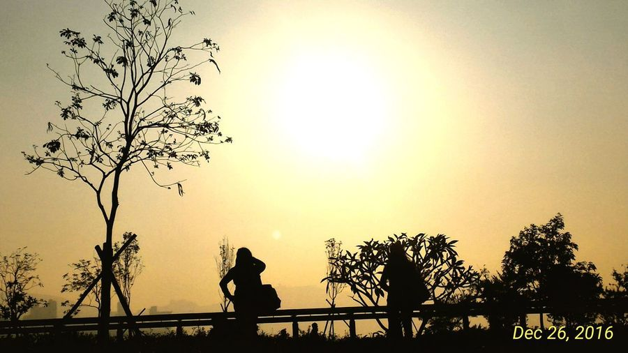Silhouette man against trees against clear sky during sunset