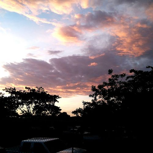 Tree Sunset Sky Cloud - Sky Tranquility Cloud Scenics Nature Outdoors Tranquil Scene Beauty In Nature