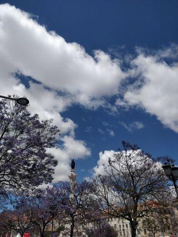 City Statue Clouds And Sky Tree Sky Cloud - Sky Urban Scene