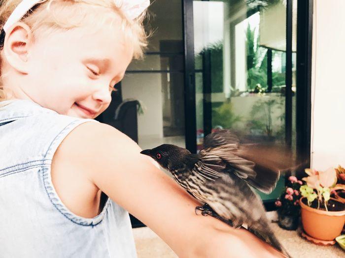 Bird perching on cute girl hand