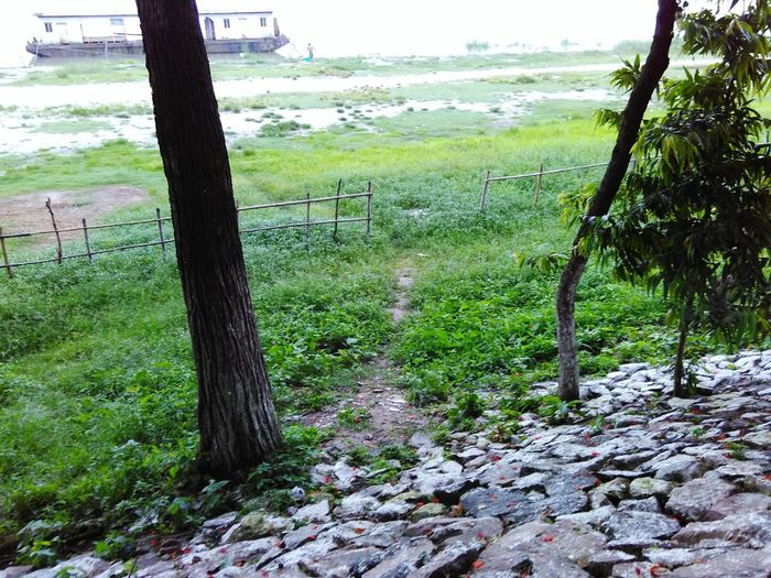 EEA3 - Guwahati Nature Almost