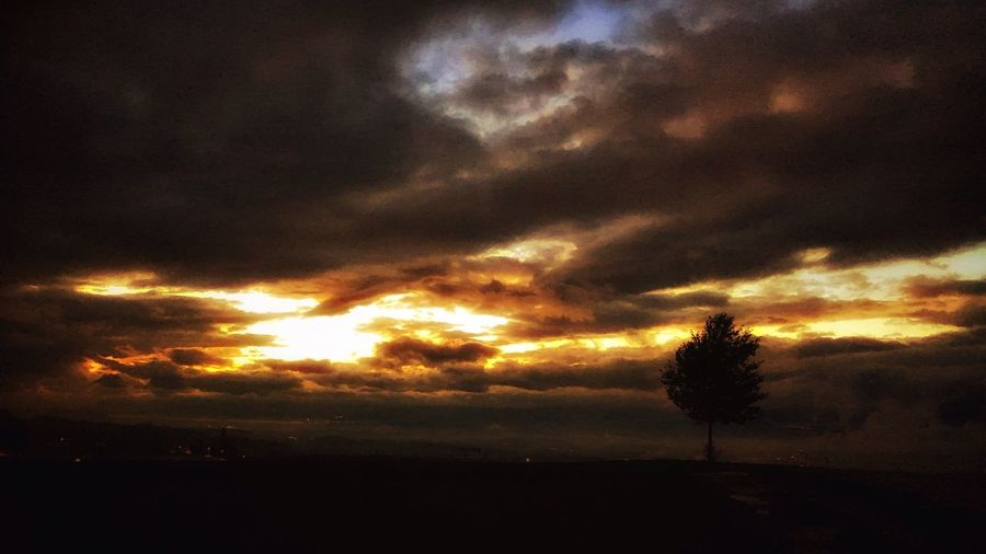 Nature Sunset Sky Beauty In Nature Silhouette Cloud - Sky Scenics No People Tranquil Scene Tranquility Outdoors Tree Day