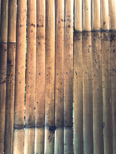Bamboo Wall Bamboo Background Bamboo Art Bamboo - Plant EyeEm Selects Full Frame Pattern Backgrounds No People Textured  Day