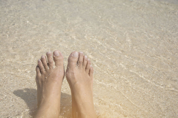Low section of person feet on sand