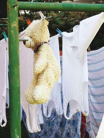 Close-up of clothes drying on rope