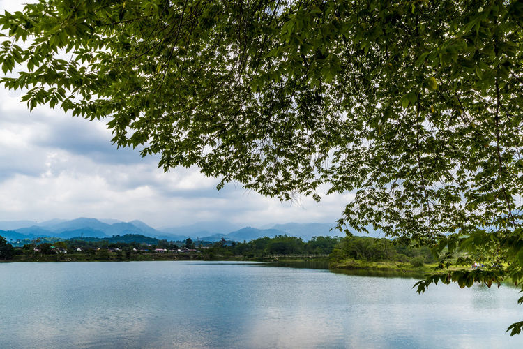 A sunny but cloudy day at a lake in Ipoh, Malaysia Tree Water Plant Lake Tranquility Scenics - Nature Beauty In Nature Cloud - Sky Day Cloudy Open Space Outdoors