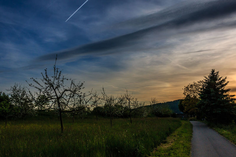 Sonnenuntergang in Rheinfelden, Mai 2016 Beauty In Nature Blue Cloud Country Countryside Field Growth Landscape Nature Nature Nature_collection Scenics Sky Sunset Tranquil Scene Tranquility Tree