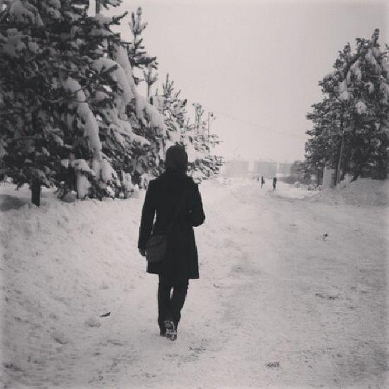 Myway Imgonna Snow Snowway winteriscoming winter blackandwhite harleydavidson muş alparslan university mus thereisntauniversity newyear firstpicture outing enjoying