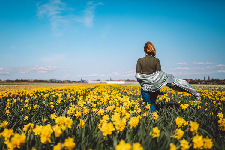 Rear view of woman with yellow flowers in field