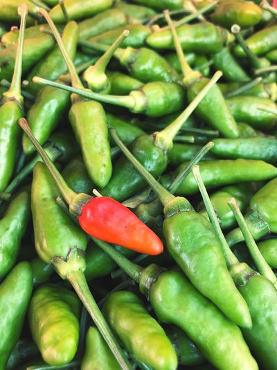 Fresh chillies for sale