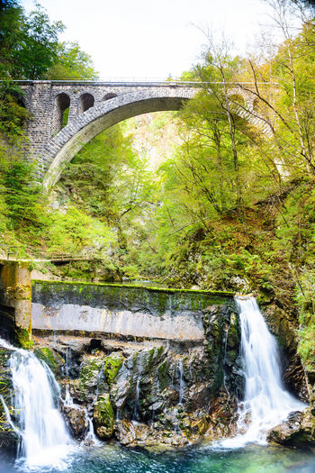 Water Bridge Bridge - Man Made Structure Connection Flowing Water Built Structure Motion Arch Long Exposure Waterfall Nature Architecture Arch Bridge Plant Tree River Scenics - Nature Beauty In Nature Forest No People Flowing Outdoors Power In Nature