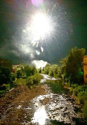 Riflection Mirror Nightphotography Long Exposure River Calebration Water Tree Illuminated Sky Firework
