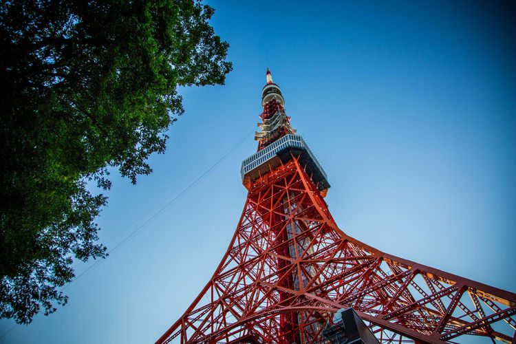 Tokyo Tower Tokyo Tokyo Tower Architecture Building Exterior Built Structure Day History Low Angle View No People Outdoors Sky Tower Travel Travel Destinations Tree