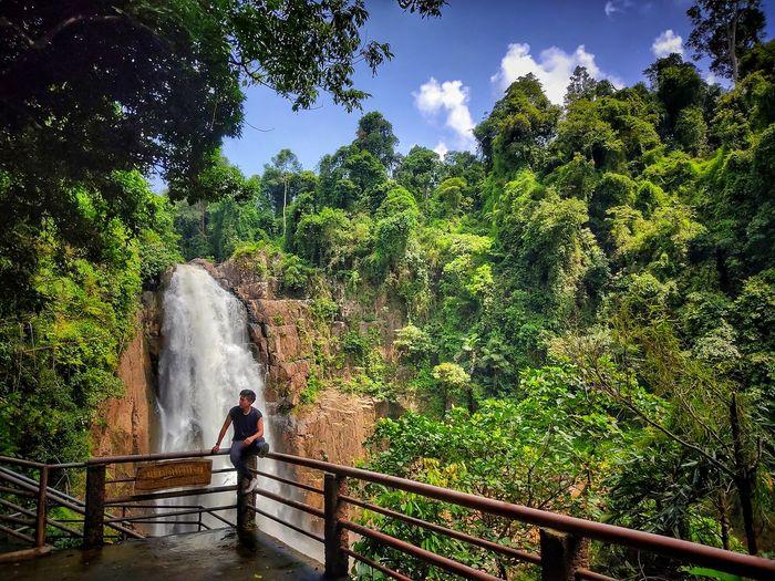 Full length of man sitting on railing against forest