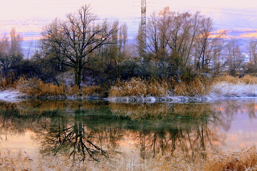 Architecture Bare Tree Beauty In Nature Cold Temperature Lake Nature No People Outdoors Plant Reflection Scenics - Nature Sky Tranquil Scene Tranquility Tree Water Waterfront Winter