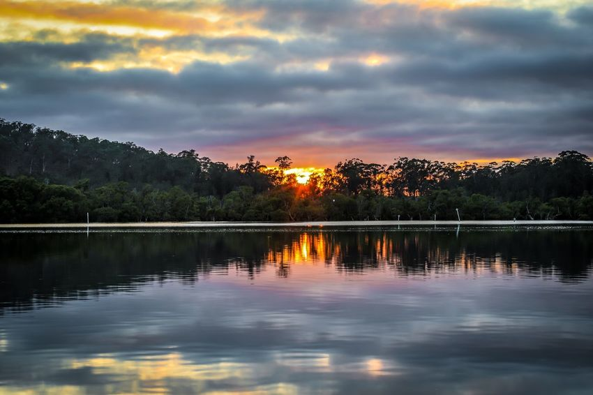 Sun rising through cloudy sky reflected in country river Sun Rising Sunrise River Water Scenic Australian Australia Karuah Landscape Sunset Reflection Sky Cloud - Sky Tranquil Scene Water Tree Beauty In Nature Nature Tranquility Scenics Lake Orange Color No People Outdoors Waterfront Day