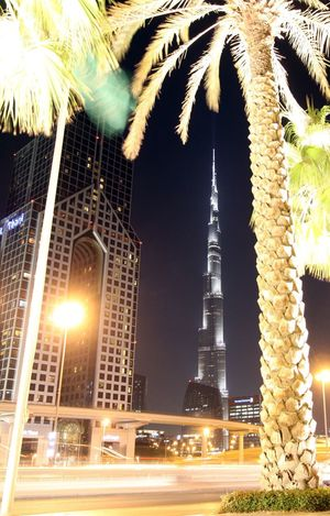 Dubai Architecture Building Exterior Built Structure Burj Al Khalifa Illuminated Lighting Equipment Low Angle View Nature Night No People Outdoors Palm Tree Sky Travel Destinations Tree