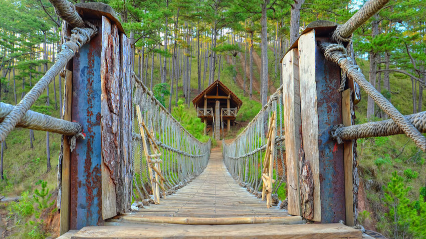 Bridge - Man Made Structure Religion Travel Destinations Outdoors Tree Architecture Day Nature No People Beauty In Nature Dalat Vietnam Bridge