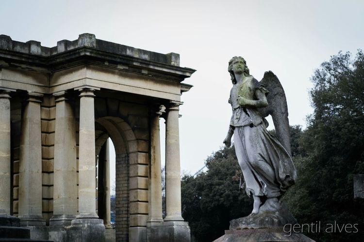 Cemitery Stone EyeEm Gallery EyeEm Best Shots Photography Landscape Sky Angel Statue Trees