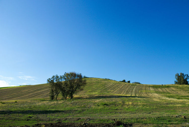 Landscapes in Marche Autumn Panorama The Week On EyeEm Tree Agriculture Backgrounds Beauty In Nature Blue Clear Sky Day Field Grass Landscape Nature No People Outdoors Rural Scene Scenics Sky Sun Tranquil Scene Tranquility Tree