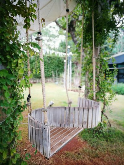 Khaoyai Travelshots Thailand Themewcafe Swing