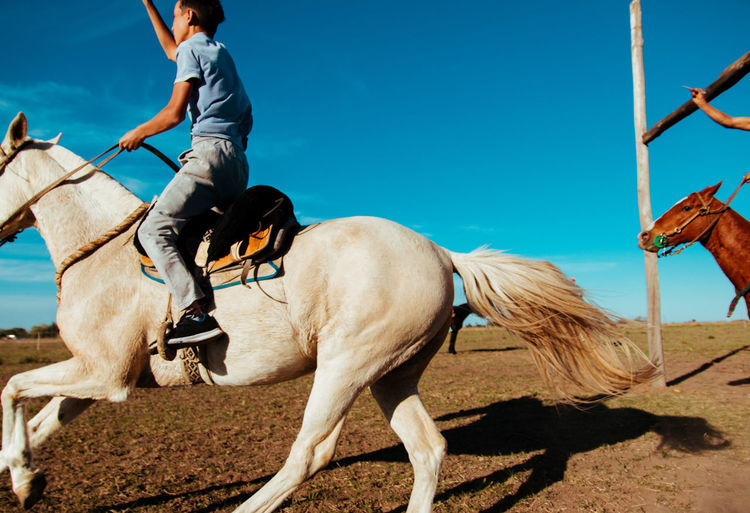 Speed horse race