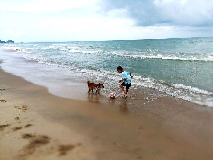 Dog❤ Dog & Boy Beach Sea Sand Dog Wave Pets Horizon Over Water Playing