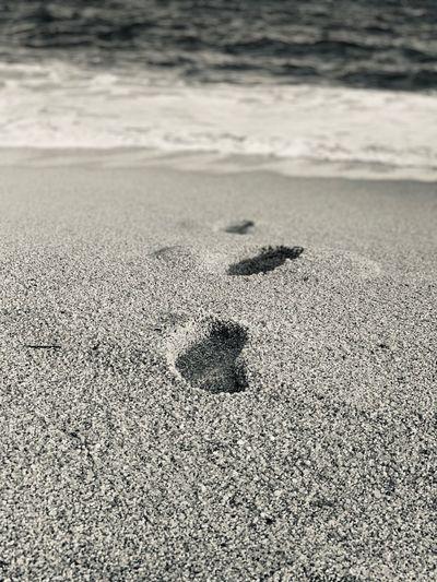 Sand Land Day