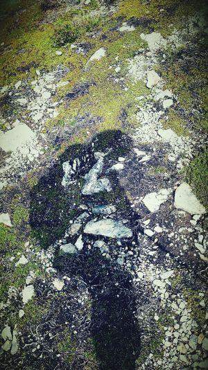 Berg Mann Mit Rucksack Beim Wandern Schattenspiel  Anderer Blickwinkel Er Folgt Dir Black Schatten Sun Effect Effect Berggefühle Leben Im Freien Moos Südtirol Meransen Natu Nature