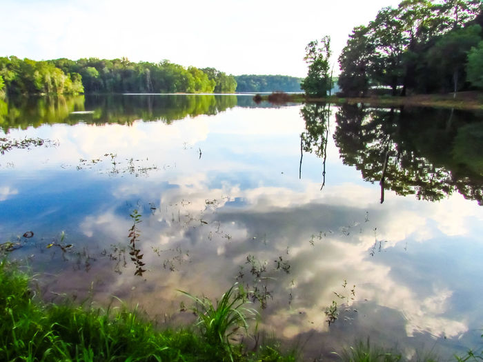 Reflection Lake Water Standing Water Outdoors Nature Tranquility Tranquil Scene Day Scenics Tree No People Landscape Beauty In Nature Reflecting Pool Sky Symmetry Cloud Reflection On Water Cloud Reflections Clouds And Sky Lake View Lakeside Lake Copiah Mississippi  Tree Lined Water