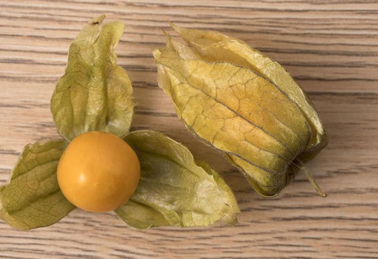Physalis fruit (Physalis Peruviana) with husk on wooden background. Close up view. Physalis; Orange; Fruit; Isolated; Berry; Food; Cherry; Sweet; Fresh; Lantern; White; Tasty; Ripe; Nature; Small; Exotic; Healthy; Husktomato; Husk; Tomato; Diet; Plant; Golden; Culinary; Juicy; Gooseberry; Background; Round; Ground; Season; Yellow; Heap; Food And Drink Food Healthy Eating Wellbeing Freshness Vegetable Fruit Close-up No People Indoors  Wood - Material Group Of Objects Still Life Table High Angle View Cross Section Green Color Yellow Raw Food Directly Above Place Mat Natural Condition