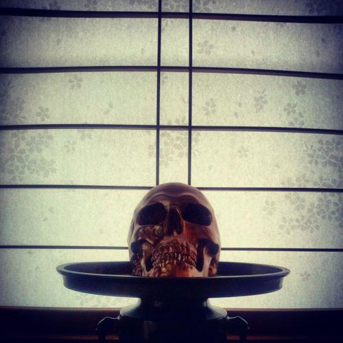 Hello World Skull Shoji Cherry Blossoms