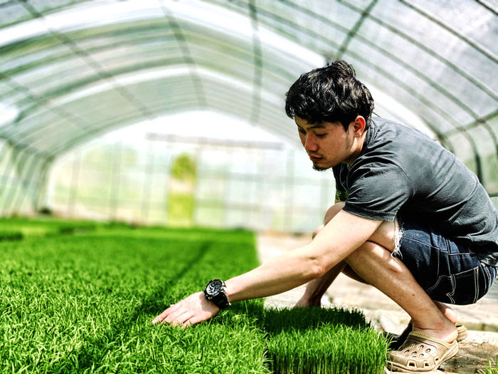 Side view of young man looking at grass