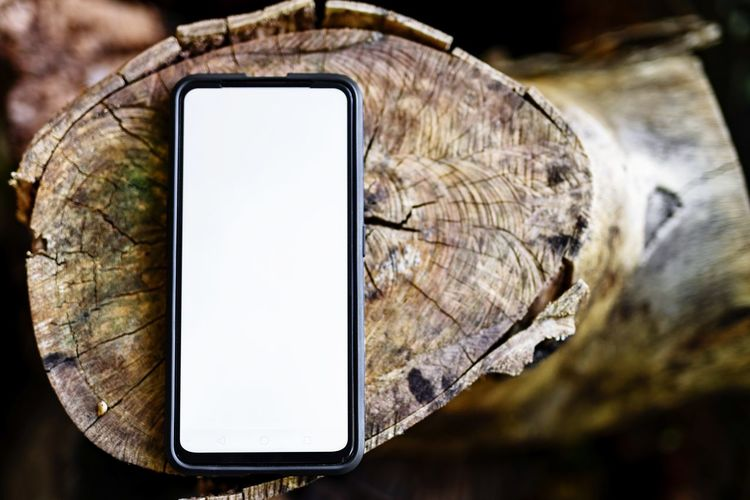 Close-up of mobile phone on tree
