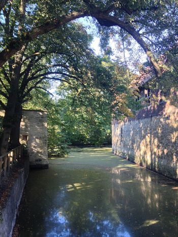 Diminishing Perspective Green Color Moat Nature Old Buildings Outdoors Solitude Tranquility Tree Tree Love Water